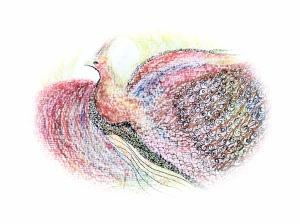 phoenix pale - Version 2